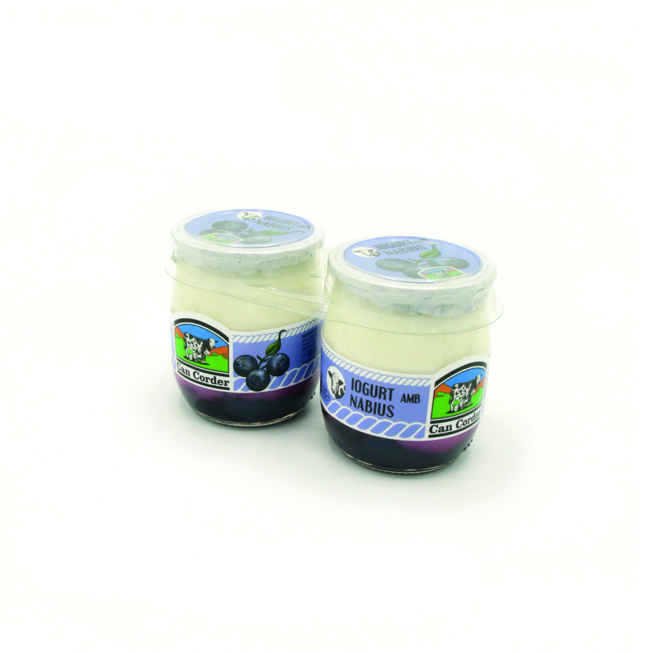 Yogurt con Arándanos